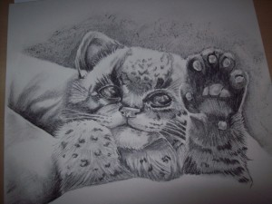 snow leopard cub is finished!